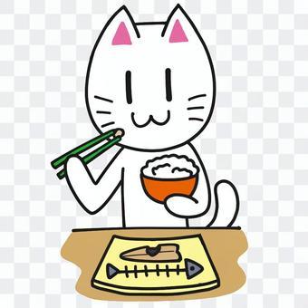 餐★貓系列★
