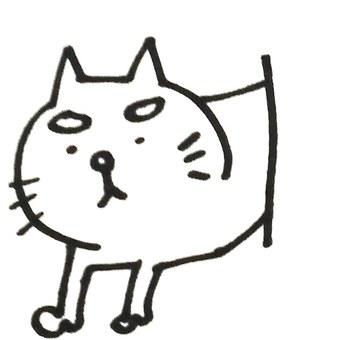 馬約貓,外觀