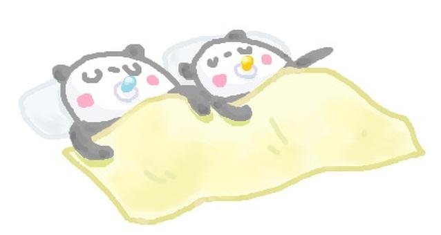 """Panda """"Baby"""" twins"""