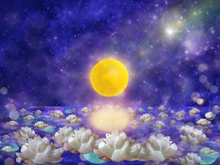The fantasy world of lotus flowers blooming in the full moon