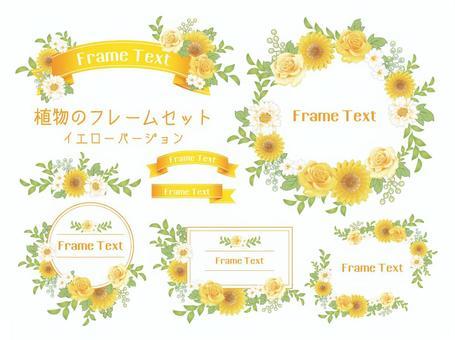 花框架·标题/黄色版本