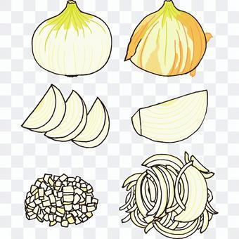New onions