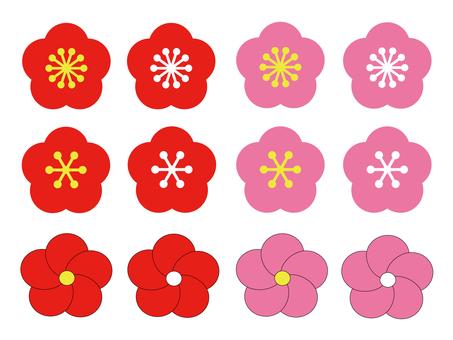 Plum blossom set