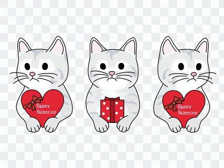 Valentine's chocolate and kitten 1