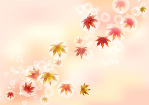 가을 무늬 단풍 3