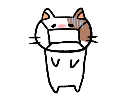 一隻戴著病面具的貓