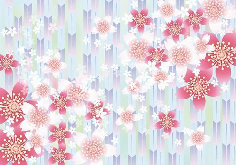 Sakura no Hana&Yabu 6