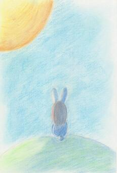 兔子和月亮