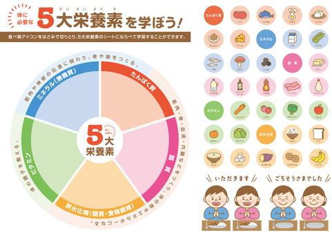 5 種主要營養套件