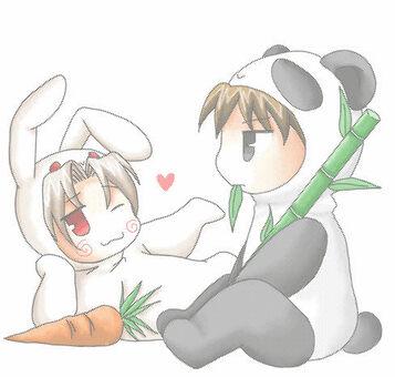 熊猫和兔子
