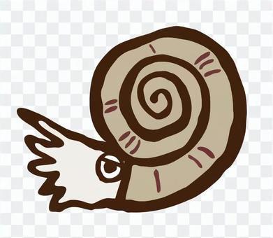 Ammonite only