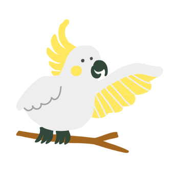 Kibatan 長尾小鸚鵡的插圖