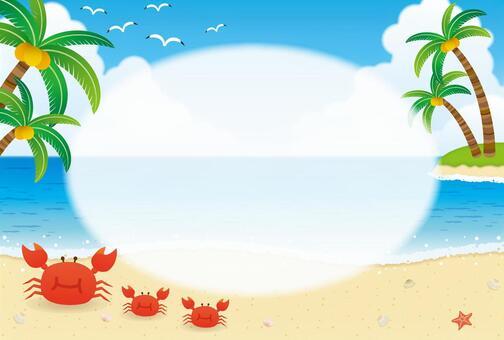 夏天海框架