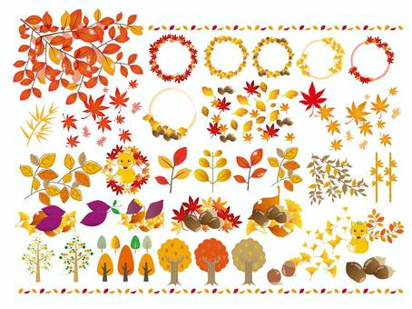 秋天的樹葉框架
