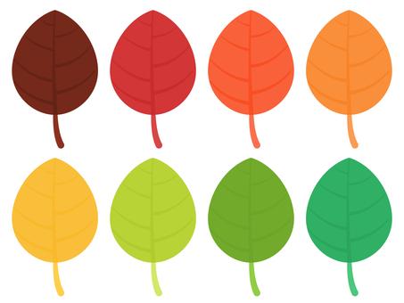 五顏六色的葉子設置與靜脈