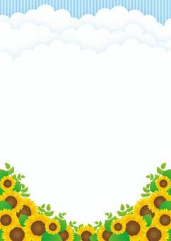 向日葵背景,A4長度,用腳