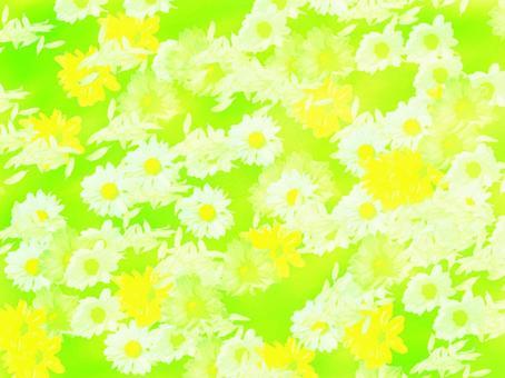 紋理背景材料花熒光綠色