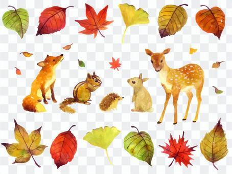 秋天的動物插圖