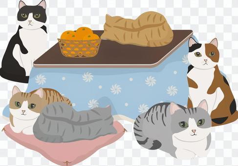 Kotatsu貓