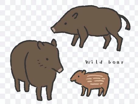 野豬的插圖集