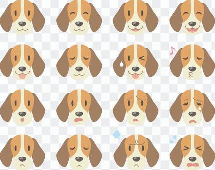 狗的臉_各種面部表情