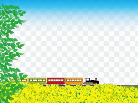 机车和油菜花