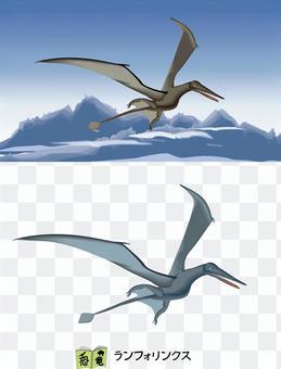 恐龍Rhamphorhynchus翼龍大