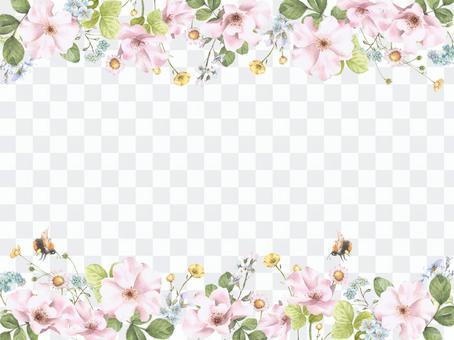 花框178  - 野玫瑰花框架,忘記草