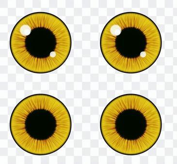 目(貓/黃色/Yellow eyes)