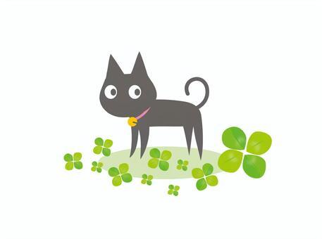 Black cat and four leaf clover