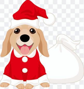 Santa can Retriever