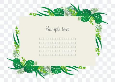 熱帶植物框架