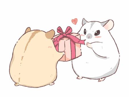 倉鼠收到禮物