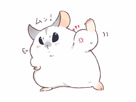 Bip hamster