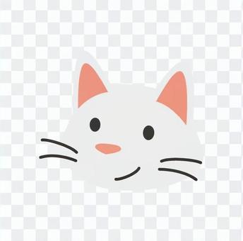 Cat - Cat's face