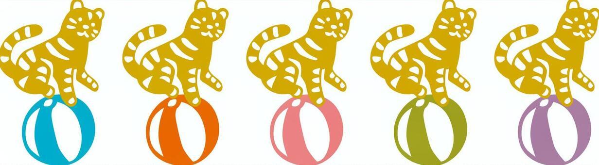 Tiger × 5