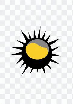 Sea urchin 2