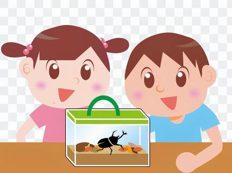 Children watching beetles