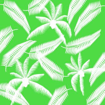 Tropical plants leaves leaves trees palms