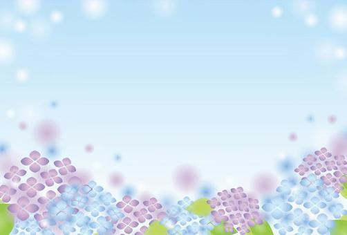 淡淡的八仙花的框架(天空)