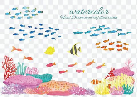 水彩珊瑚礁