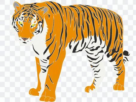 Tiger ver2