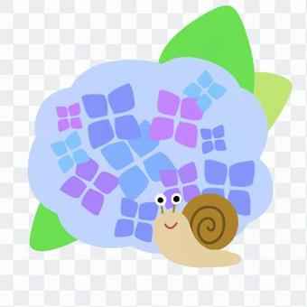 カタツムリと紫陽花(青)