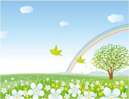 与鸟,彩虹和花盛开的山丘景观