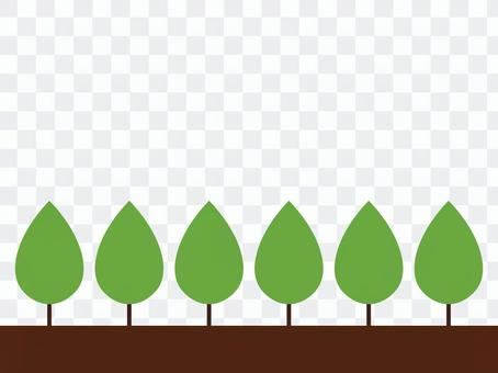 Frame / frame of street tree (fresh green)