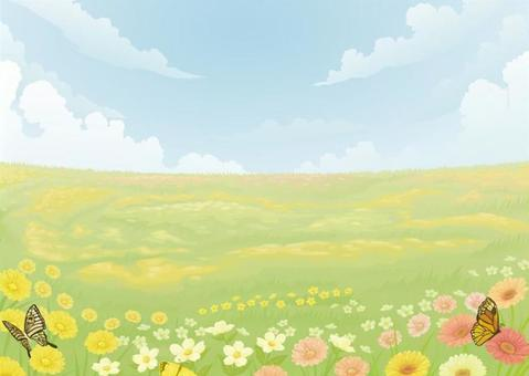 花場和蝴蝶