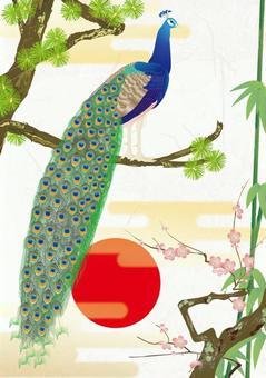 Peacock detail _ kimono pattern Shochiku Meishi _ Washi