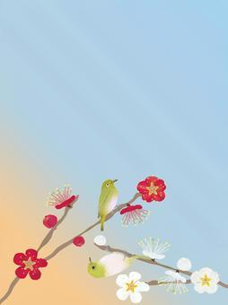 朝焼け空 紅白の梅にメジロ