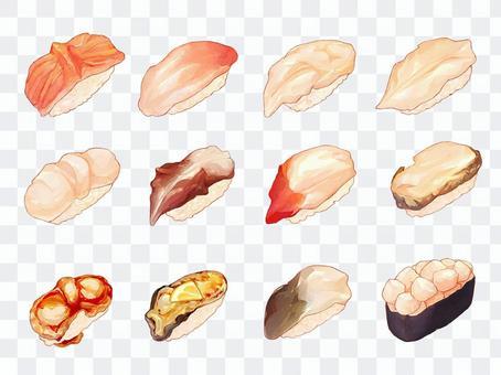 寿司のイラスト(貝類)