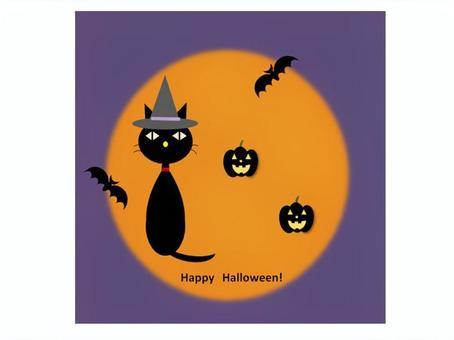 萬聖節黑貓的鬼魂